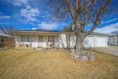 Albuquerque Single Family Home For Sale: 9401 Euclid Avenue NE