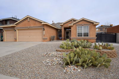 Rio Rancho Single Family Home For Sale: 7245 Assisi Hills Road NE