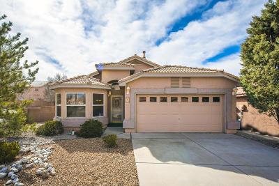 Albuquerque Single Family Home For Sale: 7164 Elk Creek Road NE