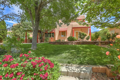 Albuquerque Single Family Home For Sale: 6201 Abiquiu Place NE