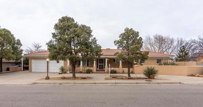 Albuquerque Single Family Home For Sale: 3307 Santa Clara Avenue SE