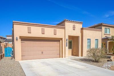 Rio Rancho Single Family Home For Sale: 7112 Skagway Drive NE