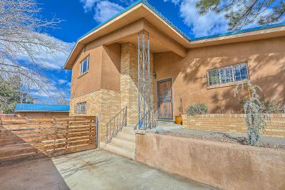 Albuquerque Single Family Home For Sale: 711 Adams Street NE