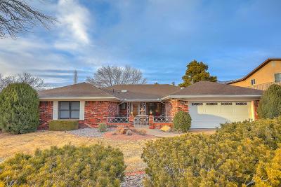 Albuquerque Single Family Home For Sale: 13219 Cedarbrook Avenue NE