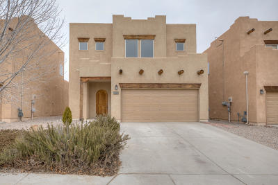 Rio Rancho Single Family Home For Sale: 4237 High Mesa Road SE