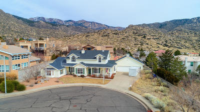 Albuquerque Single Family Home For Sale: 1600 Antonio Drive NE