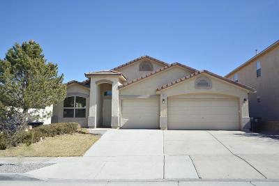 Albuquerque Single Family Home For Sale: 10512 Bitter Creek Drive NW