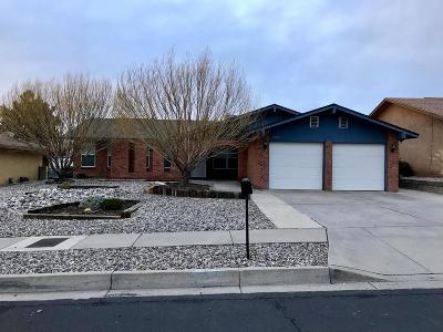 Albuquerque Single Family Home For Sale: 11029 Hagen Road NE
