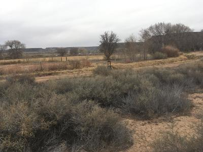 Algodones NM Residential Lots & Land For Sale: $65,500
