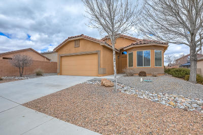 Albuquerque Single Family Home For Sale: 8323 Chilte Pine Road NW