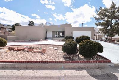 Albuquerque Single Family Home For Sale: 1004 Cuatro Cerros Trail SE