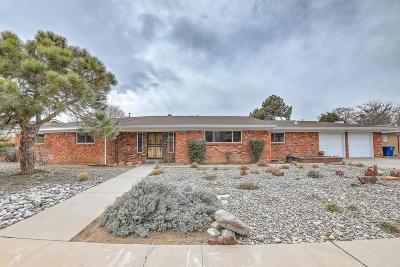 Albuquerque Single Family Home For Sale: 2913 Avenida Nevada Street NE