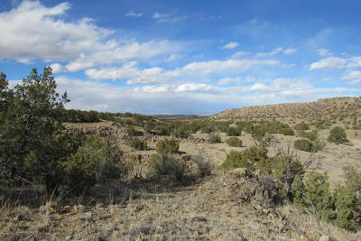Socorro County Residential Lots & Land For Sale: 8 Abbe Springs Ranches