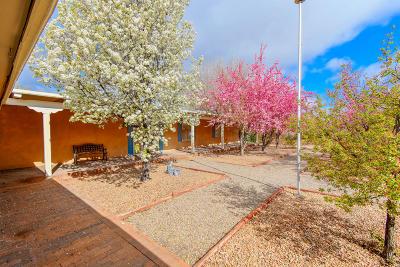 Albuquerque Single Family Home For Sale: 602 Montano Road NW