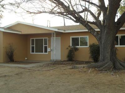 Albuquerque Single Family Home For Sale: 1705 Martha Street NE