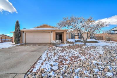 Rio Rancho Single Family Home For Sale: 6680 Shenandoah River Court NE