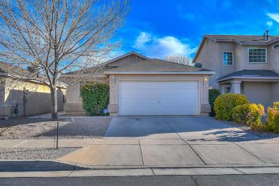 Albuquerque Single Family Home For Sale: 8304 Vista Chamisa Lane SW