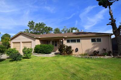 Albuquerque Single Family Home For Sale: 10713 Baldwin Avenue NE