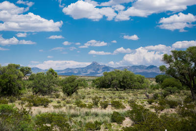 Farm & Ranch For Sale: Magic Ranch