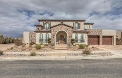 Single Family Home For Sale: 8101 Via Encantada NE