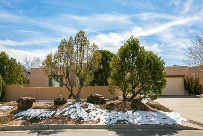 Sandia Heights Single Family Home For Sale: 8201 Indigo Avenue NE