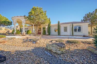 Albuquerque Single Family Home For Sale: 11100 San Bernardino Avenue