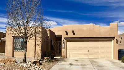 Albuquerque Single Family Home For Sale: 1015 Calle Fuerte NE