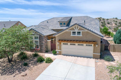 Rio Rancho Single Family Home For Sale: 2316 Desert View Road NE