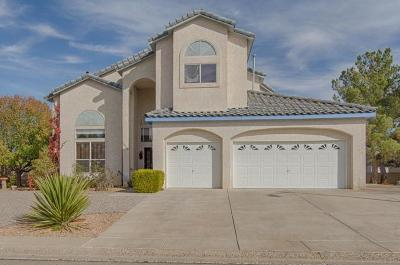 Rio Rancho Single Family Home For Sale: 3006 Ashkirk Place SE