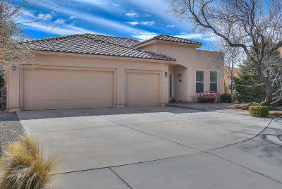 Albuquerque Single Family Home For Sale: 2920 River Willow Trail NW