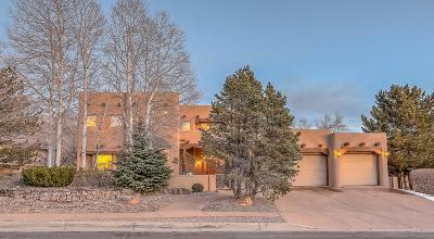 Albuquerque Single Family Home For Sale: 5400 High Canyon Trail NE