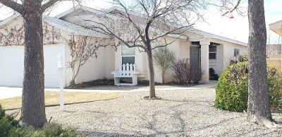 Rio Rancho Single Family Home For Sale: 3405 Martin Meadows Drive NE