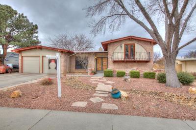 Albuquerque Single Family Home For Sale: 2201 Algodones Street NE