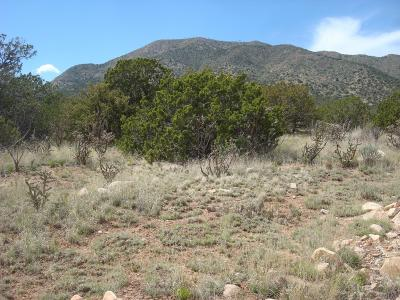 Santa Fe County Residential Lots & Land For Sale: 15 Skyview Road
