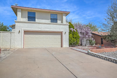 Albuquerque Single Family Home For Sale: 7617 Sherwood Drive NW