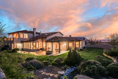 Albuquerque Single Family Home For Sale: 11801 Coyote Run Road NE
