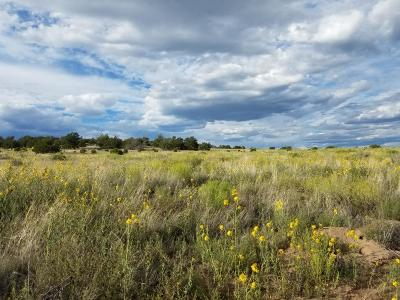Catron County Residential Lots & Land For Sale: U1 Lot 108 Indian Springs
