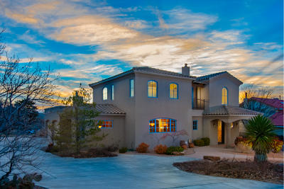 Albuquerque Single Family Home For Sale: 1621 Soplo Road SE