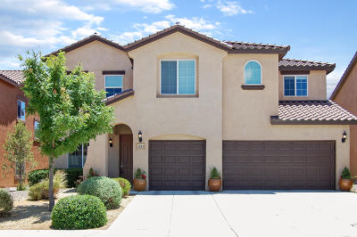 Rio Rancho Single Family Home For Sale: 128 Paseo Vista Loop NE
