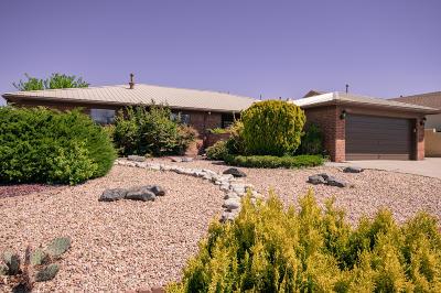 Albuquerque Single Family Home For Sale: 9713 Regal Ridge Drive NE