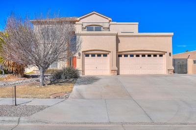 Rio Rancho Single Family Home For Sale: 5029 Brighton Hills Drive NE