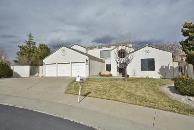 Albuquerque Single Family Home For Sale: 6612 Beau Chene NE