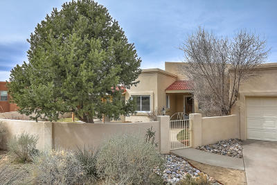 Albuquerque NM Single Family Home For Sale: $425,000