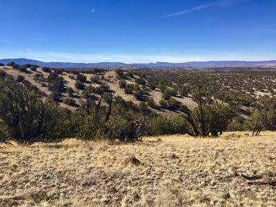Socorro County Residential Lots & Land For Sale: 110 Abbe Springs Ranches