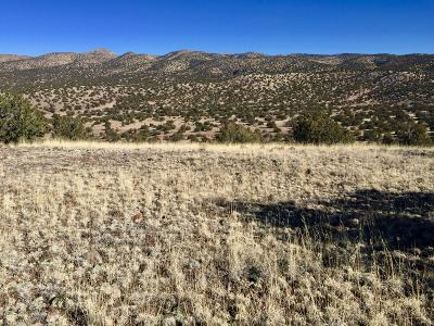 Socorro County Residential Lots & Land For Sale: 111 Abbe Springs Ranches