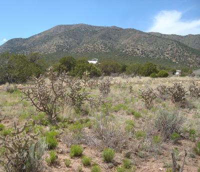 Santa Fe County Residential Lots & Land For Sale: 16 Skyview Road