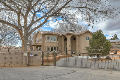 Albuquerque Single Family Home For Sale: 1511 Windmill Court NW