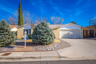 Albuquerque Single Family Home For Sale: 3824 Altez Street NE