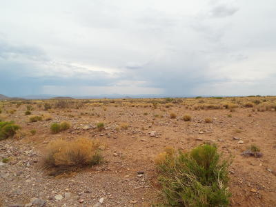 Socorro County Residential Lots & Land For Sale: LOT 2-18 Willow Springs Ranch Road