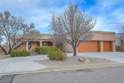 Rio Rancho Single Family Home For Sale: 2025 Clearwater Loop NE